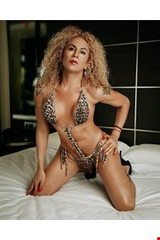33 yo Transexual escort Paloma Williams in Vigo