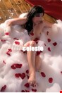 30 yo Female escort celeste in Verona