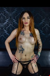 21 year old Transexual escort Alexia in Stockholm