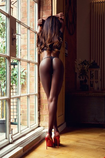 Escort London, Mia Dixion, escort London | 21 year old Female escort