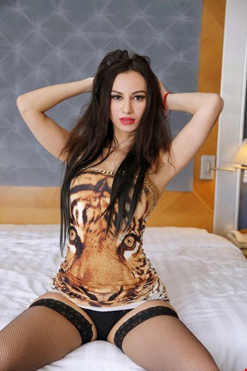 Escort Odesa, Escort Odesa, Balkiss | 23 year old Female escort