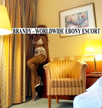 Escort Zurich, Escort Elite Brandy, Zurich | 28 year old Female escort