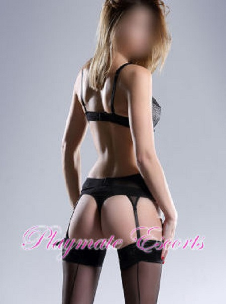 24hr escorts for outcall