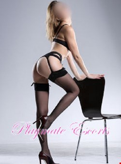 Escort Leeds, Escort Leeds, Felicity | 26 year old Female escort